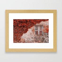 Red Ivy Wall Framed Art Print
