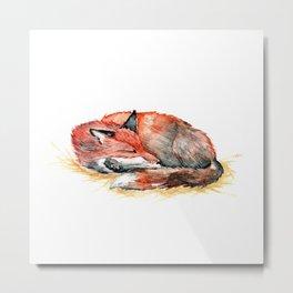 Sleeping Fox Watercolor Metal Print