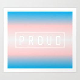 Transgender Flag v2 - Pride Art Print
