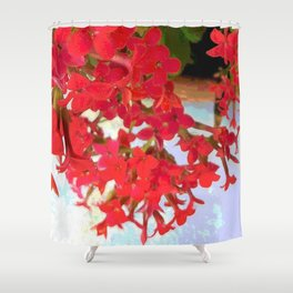 Red Kalanchoe Flowers Shower Curtain
