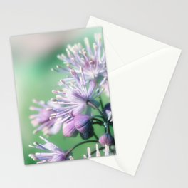 Rue close up Stationery Cards