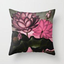 Mauve Pink Sacred Egyptian Bean Temple of Flora Throw Pillow