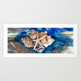 Seashells Panoramic Art Print