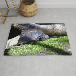 Watercolor Turtle, Loggerhead Musk Turtle 01, Rock Run, Florida Rug