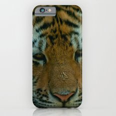 Baby Tiger  Slim Case iPhone 6s