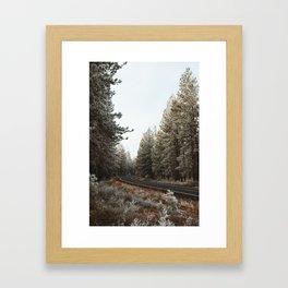 Wisp around the Trees Framed Art Print