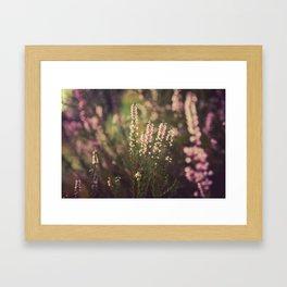 Field of Flowers 05 Framed Art Print