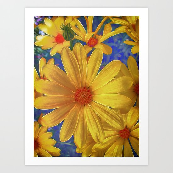 Daisy Delight Art Print