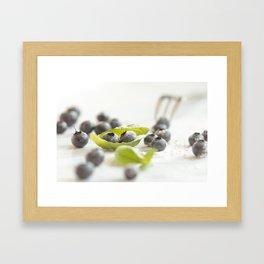 Fresh Bluebeeries with sugar Framed Art Print