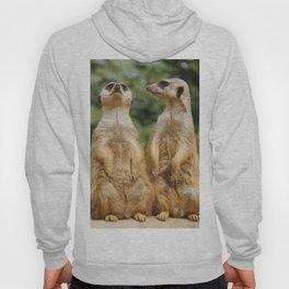 Meerkat20151204 Hoody