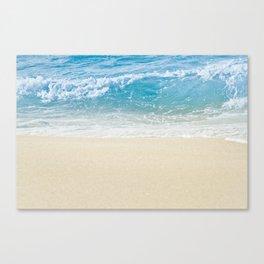 Beauty Surrounds Us Canvas Print