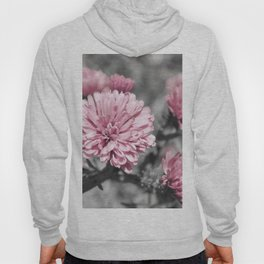 Blushing Gray Hoody