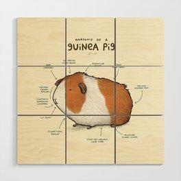 Anatomy of a Guinea Pig Wood Wall Art