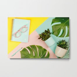 Succulents on pastel colors background. Flat lay, copy space Metal Print