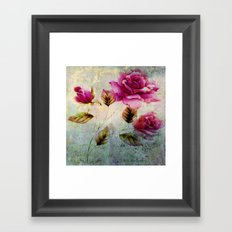 rosebush and textures Framed Art Print