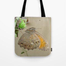 Meadow Brown Butterfly Feeding On Aphids Tote Bag