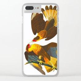 Caracara Eagle Illustration Clear iPhone Case