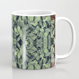 Rain Makes Life Beautiful Coffee Mug