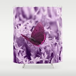 Butterfy 42 Shower Curtain