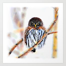 Winter Owl Watercolor Art Print