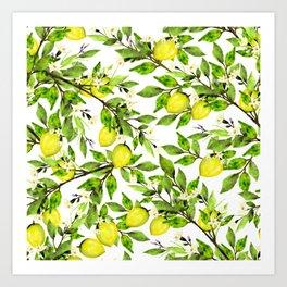 The Lemon Orchard on White Art Print