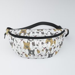 0011 Fanny Pack