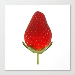 It's Strawberry Time Canvas Print