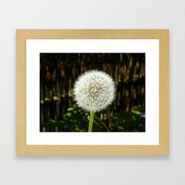 Dandelion I Framed Art Print