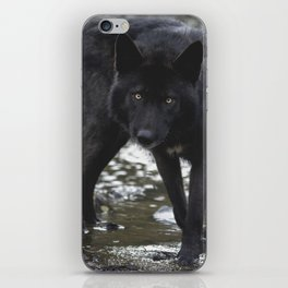 River wolf iPhone Skin