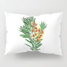 Beautiful Australian Native Bottlebrush Flower Pillow Sham