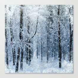 Winter wonderland scenery forest  Canvas Print