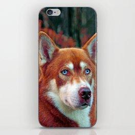 ginger iPhone Skin