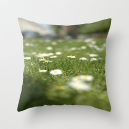 Daisies of Brussels Throw Pillow