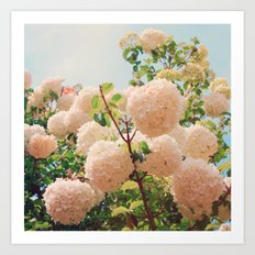Puffy flowers! Art Print