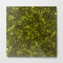 Forest Canopy Earth Metal Print