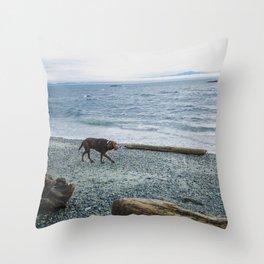 Pup on a beach Throw Pillow