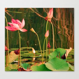 LillyHeights Canvas Print