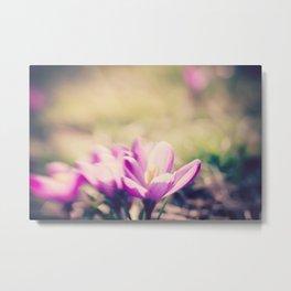 Lensbaby Flower  Metal Print