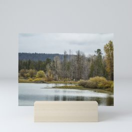 Snake River near Cattleman's Bridge Site -  Grand Tetons Mini Art Print