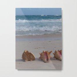 Crane Beach Metal Print