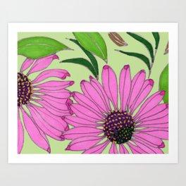 Echinacea on Pistachio Art Print