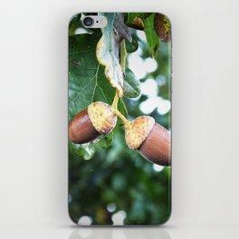 Just Hanging Around iPhone Skin