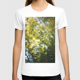 Remembrance. T-shirt