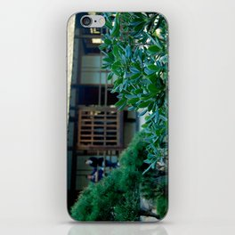 Jardin japonais,zen,Toulouse France iPhone Skin