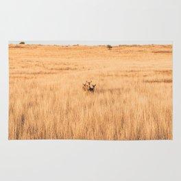 Deer In Formation at Zion National Park Rug