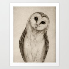 Barn Owl Sketch Art Print