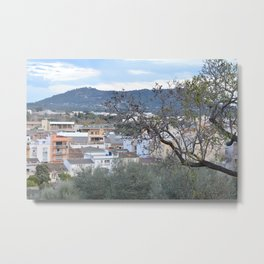 landscape in the little town Metal Print