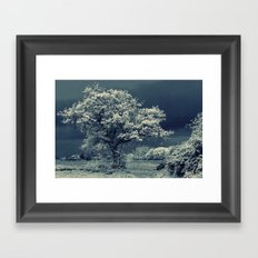 Infra Tree Framed Art Print