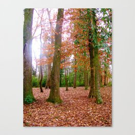 Fall-ing for the Season Canvas Print