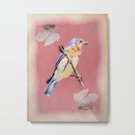Bluebird Songbird Blue Bird Cottage Chic Country Art A356 Metal Print